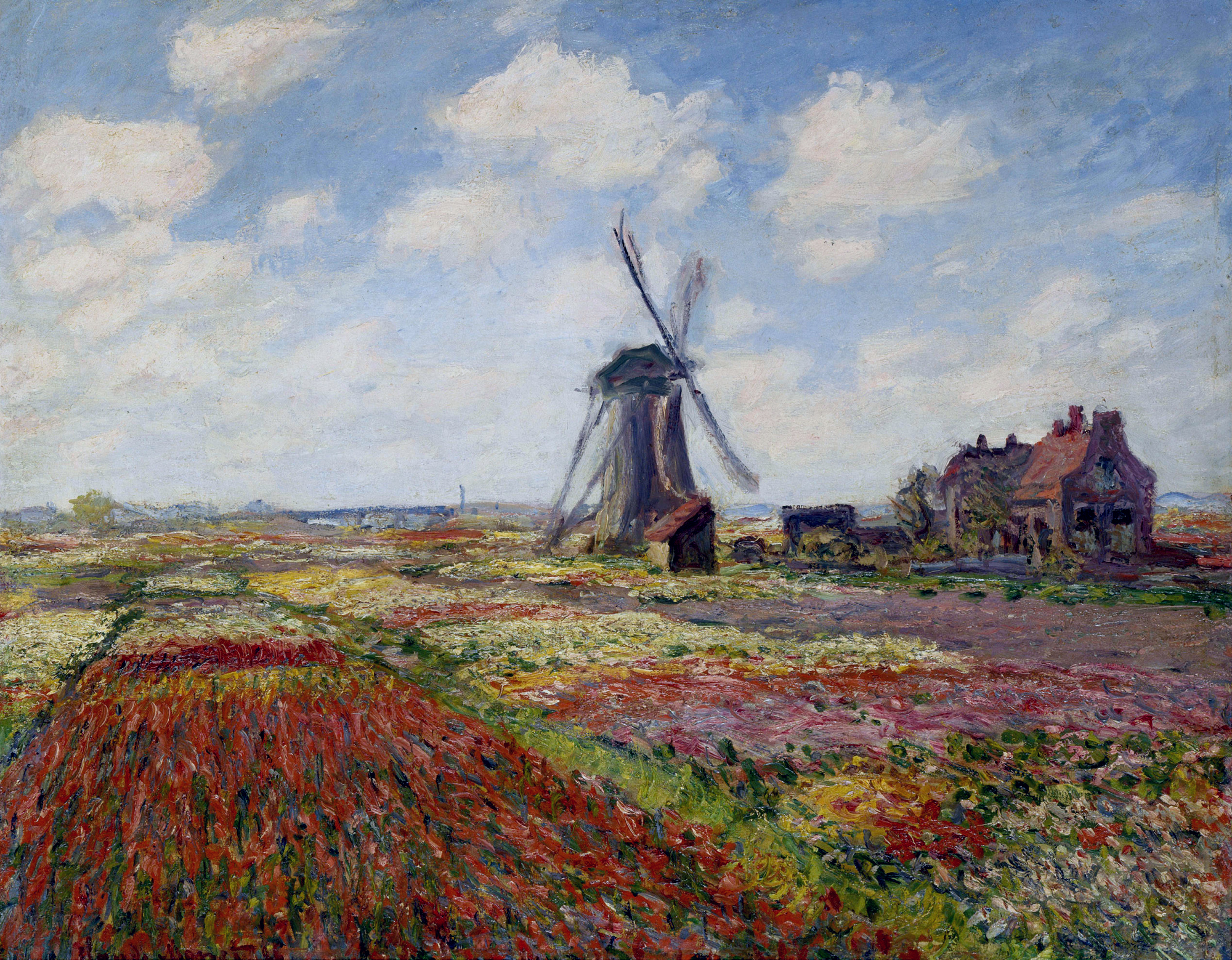 Fields of Tulip With The Rijnsburg Windmill 1886