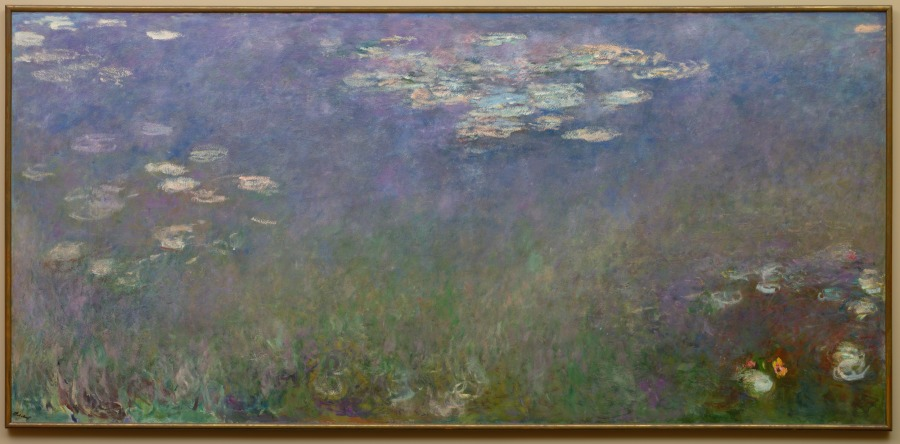 Water Lilies, Agapanthus 1915
